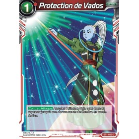 Protection de Vados BT1-025 C