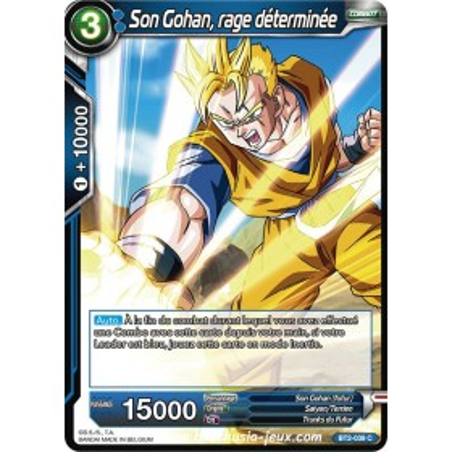 Son Gohan, rage determinee BT2-039 C