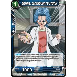 Bulma, contribuant au futur BT2-045 C