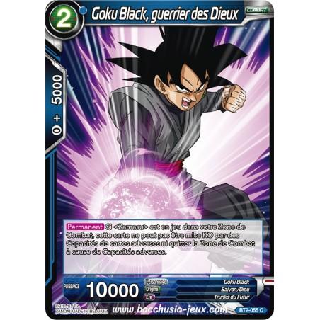Goku Black, guerrier des Dieux BT2-055 C