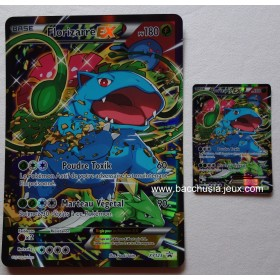 Cartes Pokemon Florizarre EX XY123 Normale + Grande (Collection rouge et bleu)